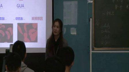 2015年江苏省高中生物优课评比《基因突变及其他变异》教学视频,李小刚