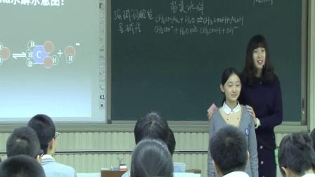 《盐类的水解》鲁教版高二化学-省实验中学:杨婧