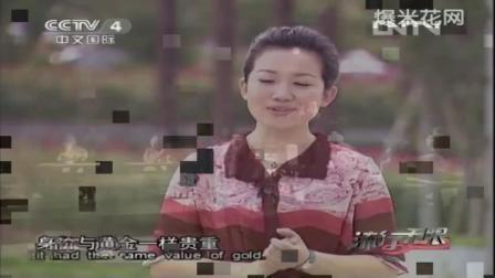 浙美版美术六年级《中国的非物质文化遗产》课堂教学视频实录-刘永永