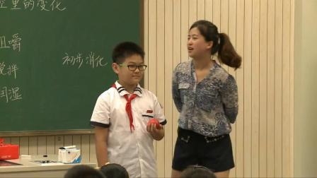 教科版小学科学四年级《食物在口腔里的变化》课堂教学视频实录-陈慧