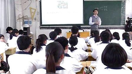 高中美术《小东西 大学问》江西省,2014学年度部级优课评选入围优质课教学视频