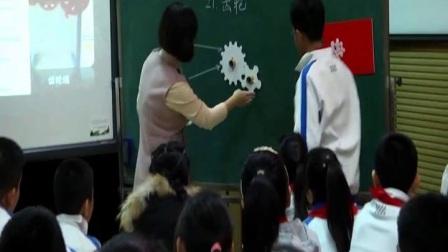 小学科学青岛版五下《齿轮》山东王晓健