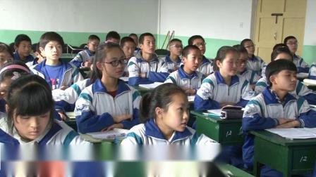 北师大版数学七上-3.3《整式》课堂教学视频实录-冯晓丽