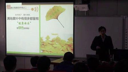 高二生物《其他植物激素》教学视频-曾旭东-2014年中南六省(区)生物教学研讨会