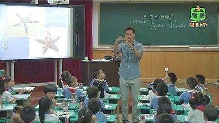 《海螺和海星》小学一年级美术锦田小学田枫