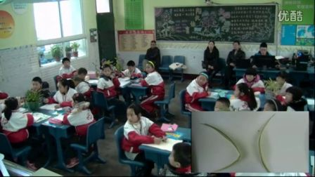 《植物写生》第七届中小学教学观摩(人教版美术四年级,顺庆实验小学:刘玲)
