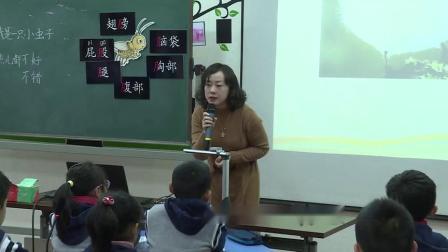 《我是一只小虫子》小学语文二年级优质课视频