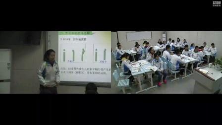 《植物生长素的发现》高二生物-郑州十六中:史歌