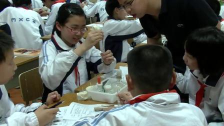 华师大版科学八上5.1《食物的消化与吸收》课堂实录教学视频-焦越