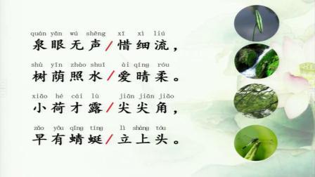 《小池》部编版小学语文一下课堂实录-上海市_上海市_奉贤区-戴嘉俊