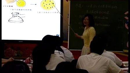 高中生物《基因表达载体的构建》福建省,2014学年度部级优课评选入围优质课教学视频