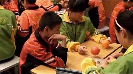 小学科学《太阳系》教学视频,叶军, 浙江省小学科学特级教师网络工作室课堂教学研讨活动视频
