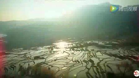 初中地理人教版八下《7.1  自然特征与农业》江苏杨煜