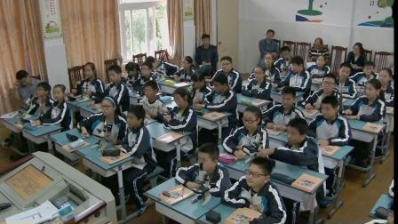 华师大版科学七上4.2《显微镜的结构与基本操作》课堂教学视频实录-卢群