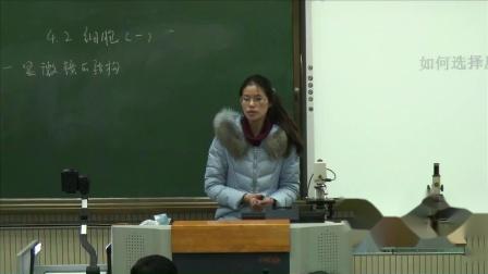 华师大版科学七上4.2《细胞》课堂教学视频实录-杜亚美