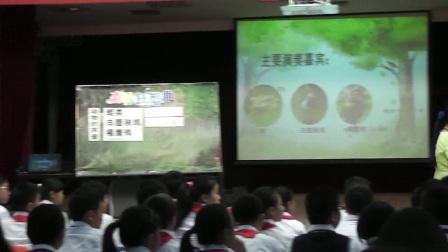 五年级音乐《森林狂想曲》广西中小学优质课及观摩活动-黎桃