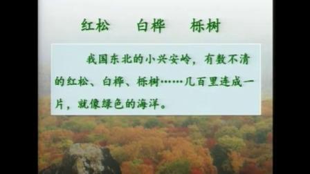《美丽的小兴安岭》小学语文三年级上册优质课观摩教学视频-王林波