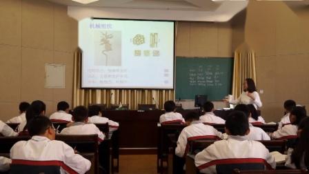华师大版科学七上4.3《组织、器官、系统》课堂教学视频实录-戴莹君