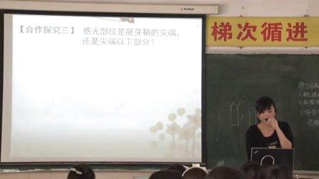 陕西省示范优质课《植物生长素的发现3-1》高一生物,西安市田家炳中学:张月