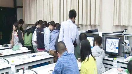 2015年江苏省高中生物优课评比《细胞器》教学视频,马媛媛