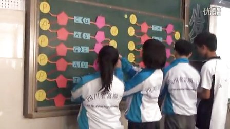 2015四川优质课《基因指导蛋白质的合成》人教版高二生物,富顺第二中学校:徐敏
