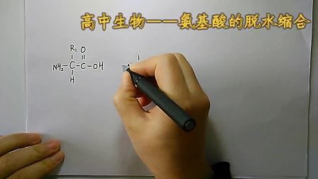 《氨基酸的脱水缩合》高一生物-合阳中学-樊晓丽-陕西省首届微课大赛