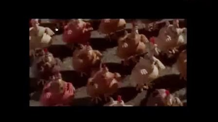 初二美术《新疆人物捏塑动画的摆拍》教学视频-新疆-贾玉婷-2014年全国中小学美术培训示范课视频