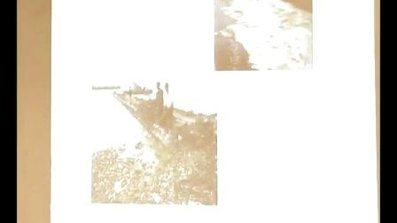 《保护我们共同的家园》教学课例(人教版高二生物,深圳外国语学校:王大庆)