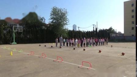 《武术:小套路》科学版四年级体育,张浩