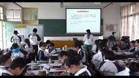 初中美术人教版七年级第1课《色彩的魅力》湖南唐育蓉