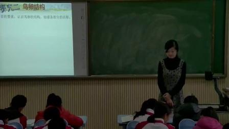 初中生物人教版八下《7.1 鸟的生殖和发育》山东刘秀