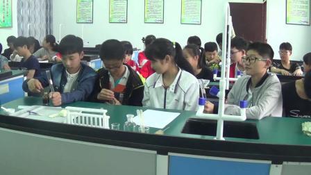 人教2011课标版生物七下-4.2.2《消化和吸收》教学视频实录-宋冬玲