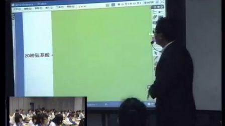 第五届电子白板大赛《生命活动的主要承担者—蛋白质》(人教版生物高一,广州市真光中学:侯磊)