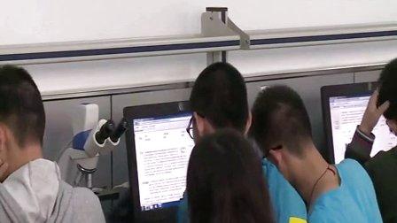 2015年江苏省高中生物优课评比《细胞器》教学视频,徐燕